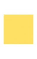 Фон бумажный 2,7x11м желтый   Polaroid