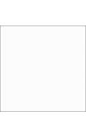 FST фон виниловый 220x430 см белого цвета