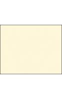 BD Фон бумажный 2,7x11м IVORY ( 155BDCW / 155-BD-A1 )
